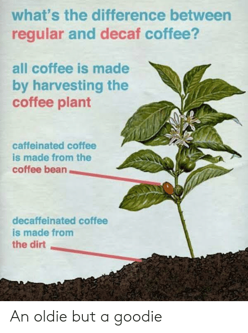 Harvesting: what's the difference between  regular and decaf coffee?  all coffee is made  by harvesting the  coffee plant  caffeinated coffee  is made from the  coffee bean  decaffeinated coffee  is made from  the dirt An oldie but a goodie