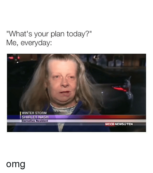 """shirley: """"What's your plan today?""""  Me, everyday:  WINTER STORM  SHIRLEY NASH  Cornelius Resident  WCCB NEWS@TEN omg"""