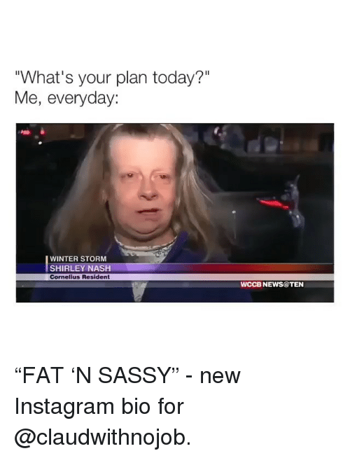 """shirley: """"What's your plan today?""""  Me, everyday:  WINTER STORM  SHIRLEY NASH  Cornelius Resident  WCCB NEWS@TEN """"FAT 'N SASSY"""" - new Instagram bio for @claudwithnojob."""