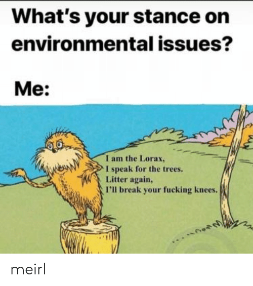 Fucking, Break, and Trees: What's your stance on  environmental issues?  Me:  I am the Lorax,  I speak for the trees.  Litter again,  I'll break your fucking knees. meirl