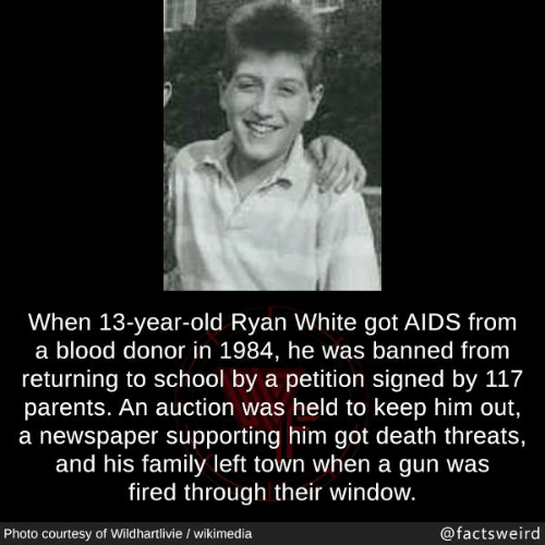 auction: When 13-year-old Ryan White got AIDS from  a blood donor in 1984, he was banned from  returning to school by a petition signed by 117  parents. An auction was held to keep him out,  a newspaper supporting him got death threats,  and his family left town when a gun was  fired through their window.  Photo courtesy of Wildhartlivie / wikimedia  @factsweird