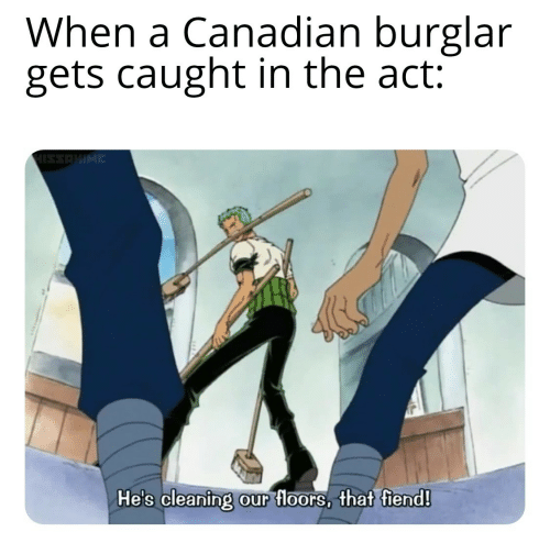 Canadian, Act, and Fiend: When a Canadian burglar  gets caught in the act:  HISSAHIME  He's cleaning our floors, that fiend!