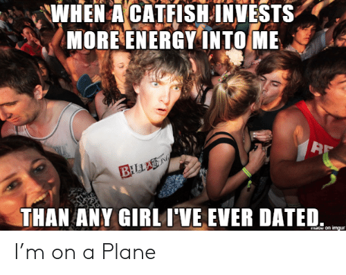 Catfished, Energy, and Girl: WHEN A CATFISH INVESTS  MORE ENERGY INTO ME  BILLAN  THAN ANY GIRL I'VE EVER DATED  mage on imgur I'm on a Plane