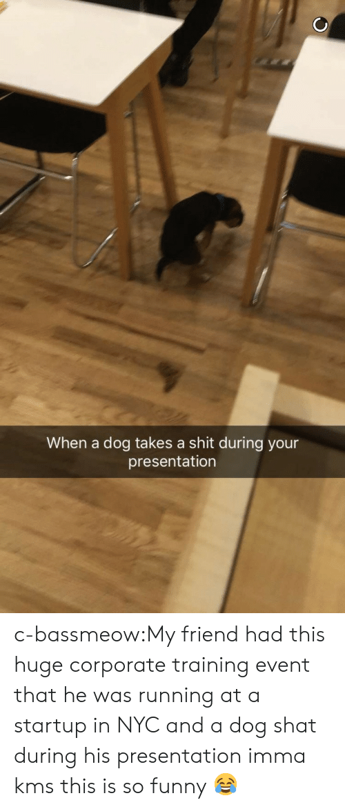 Funny, Shit, and Tumblr: When a dog takes a shit during your  presentation c-bassmeow:My friend had this huge corporate training event that he was running at a startup in NYC and a dog shat during his presentation imma kms this is so funny 😂