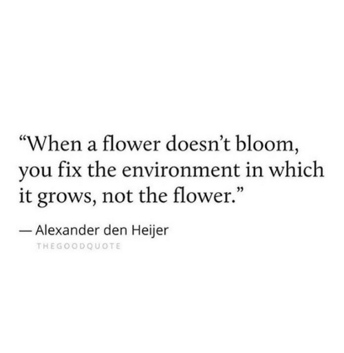 "Flower, Alexander, and Bloom: ""When a flower doesn't bloom,  vou fix the environment in which  it grows, not the flower.""  05  Alexander den Heijer  THEGOODQUOTE"