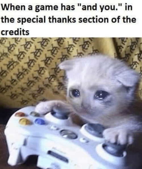 """Game, A Game, and You: When a game has """"and you."""" in  the special thanks section of the  credits"""