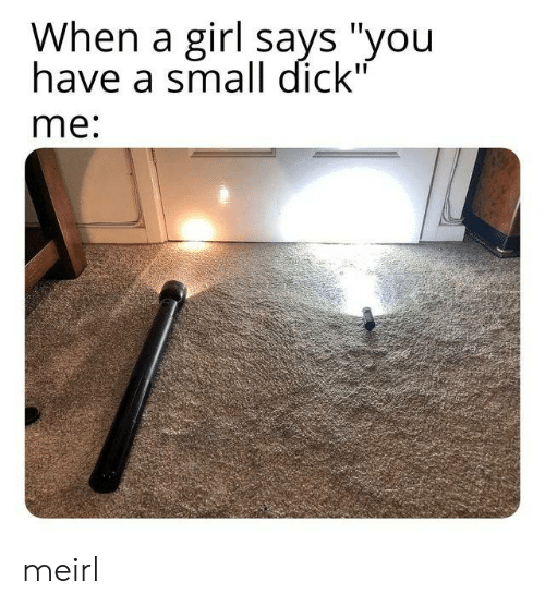 "Says You: When a girl says ""you  have a small dick""  me: meirl"