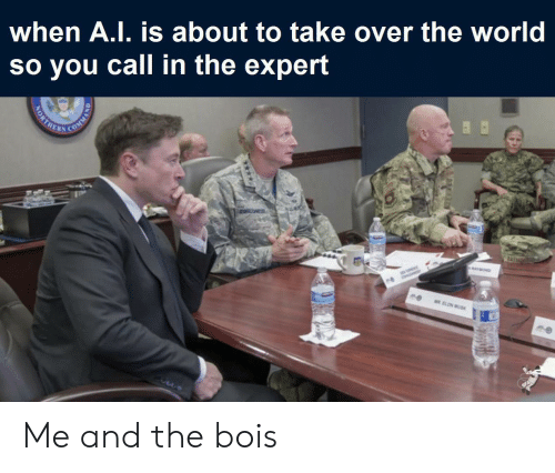 Expert: when A.I. is about to take over the world  so you call in the expert  RATMOND  MR ELON MUSK  NORTHE Me and the bois