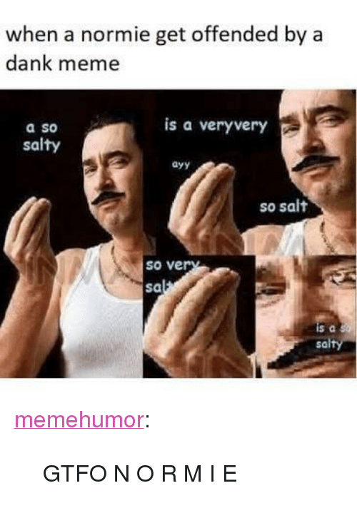 "Dank, Meme, and Being Salty: when a normie get offended by a  dank meme  is a veryvery  a so  salty  ayy  so salt  so ve  sa  sa <p><a href=""http://memehumor.net/post/166412662186/gtfo-n-o-r-m-i-e"" class=""tumblr_blog"">memehumor</a>:</p>  <blockquote><p>GTFO N O R M I E</p></blockquote>"