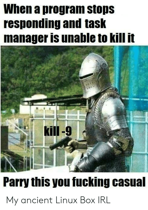 Kill It: When a program stops  responding and task  manager is unable to kill it  Parry this you fucking casual My ancient Linux Box IRL
