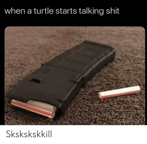 Shit, Turtle, and Talking Shit: when a turtle starts talking shit Skskskskkill
