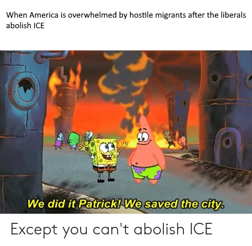 We Did It Patrick We Saved The City: When America is overwhelmed by hostile migrants after the liberals  abolish ICE  We did it Patrick! We saved the city. Except you can't abolish ICE