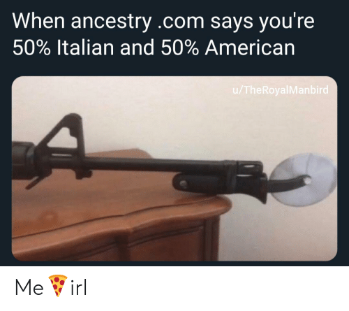 American, Ancestry, and ancestry.com: When ancestry .com says you're  50% Italian and 50% American  /TheRoyalManbird Me🍕irl