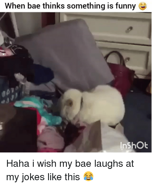 Bae, Funny, and Jokes: When bae thinks something is funny Haha i wish my bae laughs at my jokes like this 😂
