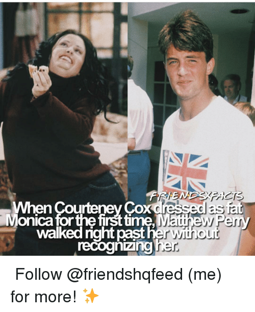 Matthew Perry, Memes, and Courteney Cox: When Courteney Cox dressed as  Monica forthe firsttime Matthew Perry  recoghizingher  walked right  past her with o  ur ↳ Follow @friendshqfeed (me) for more! ✨