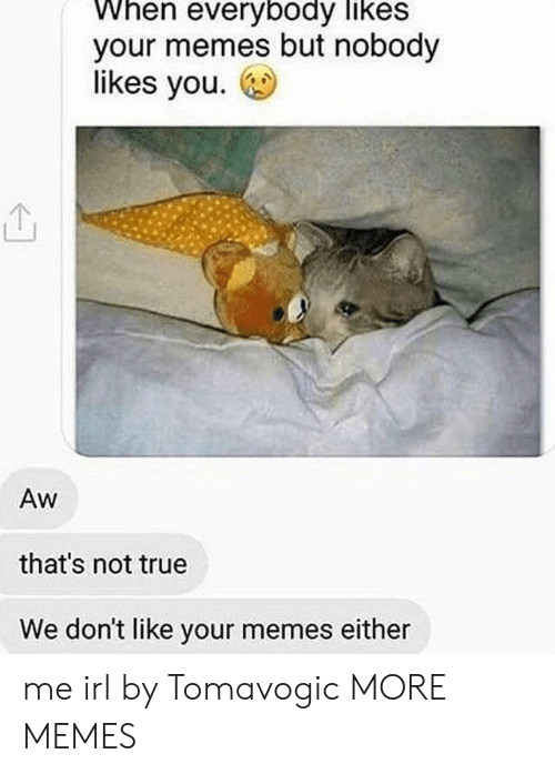 Your Memes: When everybody likes  your memes but nobody  likes you.  Aw  that's not true  We don't like your memes either me irl by Tomavogic MORE MEMES