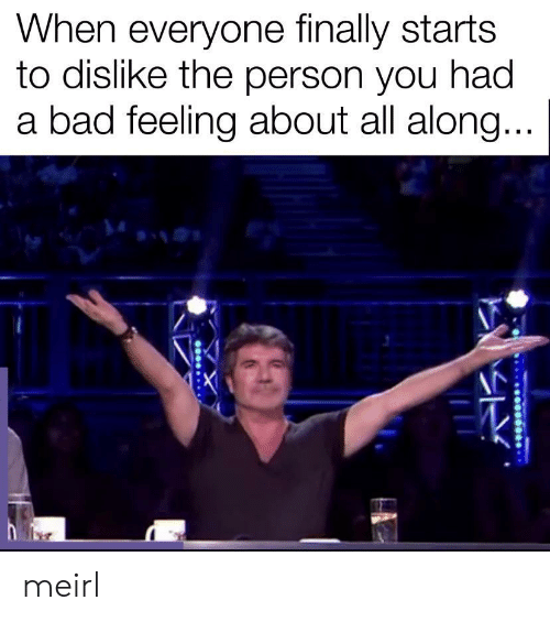 Bad, MeIRL, and All: When everyone finally starts  to dislike the person you had  a bad feeling about all along... meirl