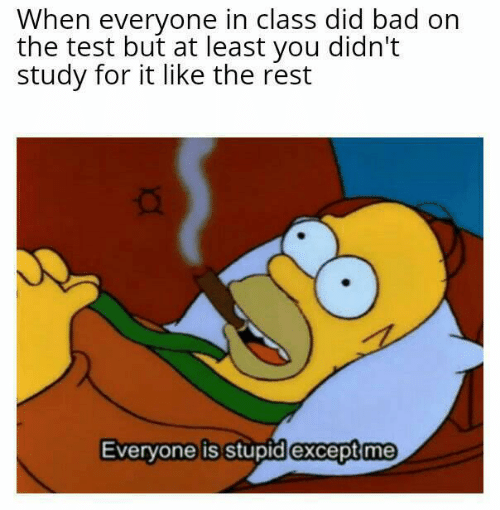 study: When everyone in class did bad on  the test but at least you didn't  study for it like the rest  Everyone is stupid except me