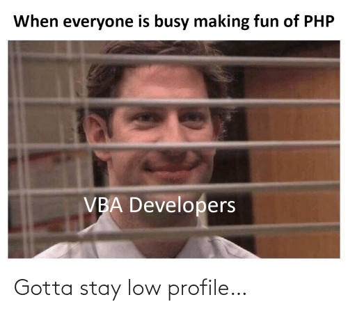 vba: When everyone is busy making fun of PHP  VBA Developers Gotta stay low profile…