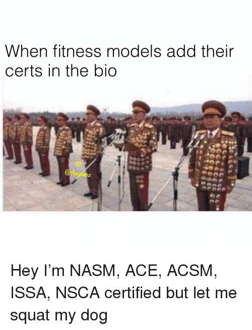 Memes, Models, and Squat: When fitness models add their  certs in the bio  8G  Othegainz  2 Hey I'm NASM, ACE, ACSM, ISSA, NSCA certified but let me squat my dog