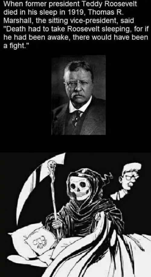 "awake: When former president Teddy Roosevelt  died in his sleep in 1919, Thomas R.  Marshall, the sitting vice-president, said  ""Death had to take Roosevelt sleeping, for if  he had been awake, there would have been  a fight."""