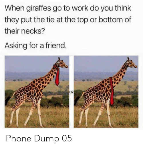 Asking For: When giraffes go to work do you think  they put the tie at the top or bottom of  their necks?  Asking for a friend.  OR  ক Phone Dump 05