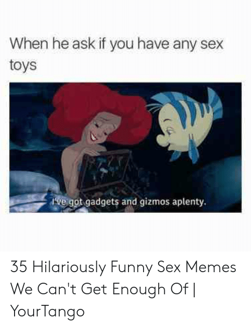 Funny Sex Memes: When he ask if you have any sex  toys  Ive got gadgets and gizmos aplenty. 35 Hilariously Funny Sex Memes We Can't Get Enough Of   YourTango