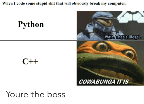 Bosses: When I code some stupid shit that will obviously break my computer:  Python  Wait. That's illegal  COWABUNGA ITIS Youre the boss