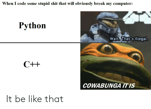 Be Like, Shit, and Break: When I code some stupid shit that will obviously break my computer:  Python  Wait. That's illegal  COWABUNGA ITIS It be like that