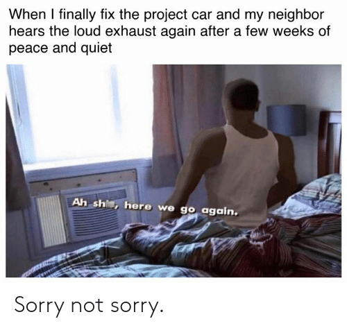 Cars, Sorry, and Quiet: When I finally fix the project car and my neighbor  hears the loud exhaust again after a few weeks of  peace and quiet  Ah sh, here we go again. Sorry not sorry.