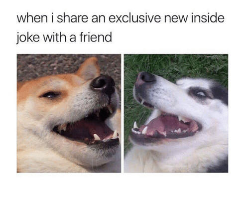 Memes, 🤖, and Friend: when i share an exclusive new inside  joke with a friend