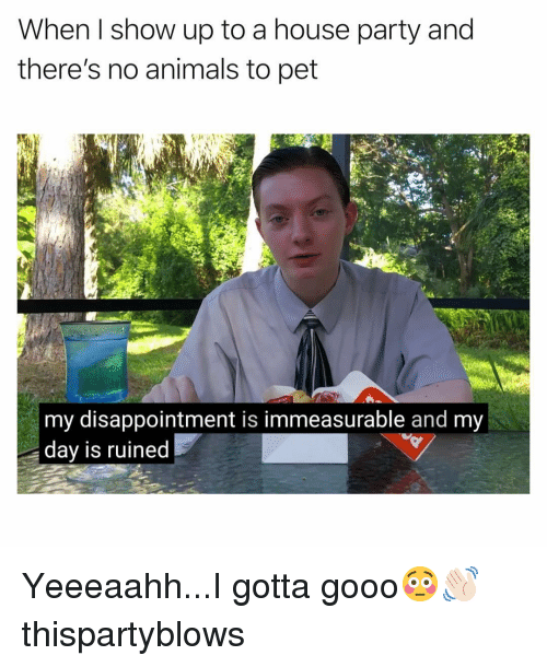 Animals, Funny, and Gooo: When I show up to a house party and  there's no animals to pet  my disappointment is immeasurable and my  dav is ruined Yeeeaahh...I gotta gooo😳👋🏻 thispartyblows