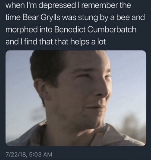 bee: when I'm depressed I remember the  time Bear Grylls was stung by a bee and  morphed into Benedict Cumberbatch  and I find that that helps a lot  7/22/18, 5:03 AM