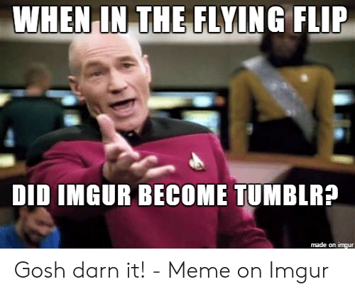 Meme, Imgur, and Did: WHEN IN TEFLYİNG FLIP  DID IMGUR BECOME TUMBLRA  made on imgur