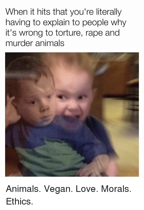 ethics: When it hits that you're literally  having to explain to people why  it's wrong to torture, rape and  murder animals Animals. Vegan. Love. Morals. Ethics.