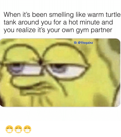 Gym, Memes, and Turtle: When it's been smelling like warm turtle  tank around you for a hot minute and  you realize it's your own gym partner  1G: @thegainz 😷😷😷