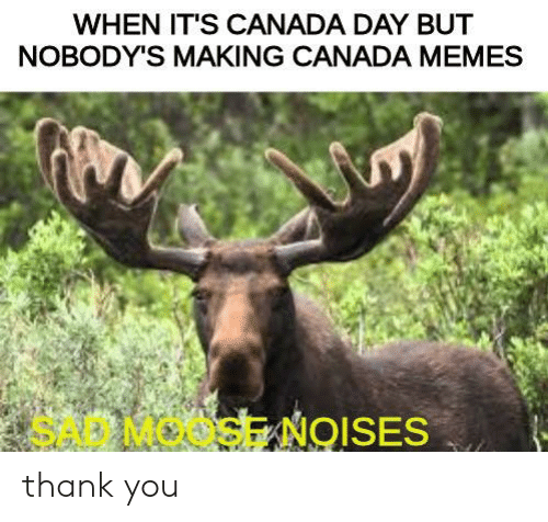 Canada Memes: WHEN IT'S CANADA DAY BUT  NOBODY'S MAKING CANADA MEMES  Moost NOISES thank you