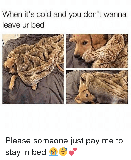 Stay in bed meme 25 best memes about stay in bed stay in for Best time of year to purchase furniture