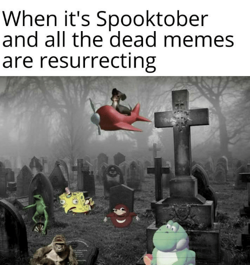Memes Are: When it's Spooktober  and all the dead memes  are resurrecting