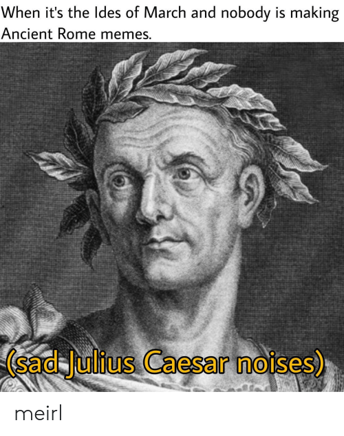 Memes, Julius Caesar, and Ancient: When it's the ldes of March and nobody is making  Ancient Rome memes  (sad Julius Caesar noises)  0 meirl