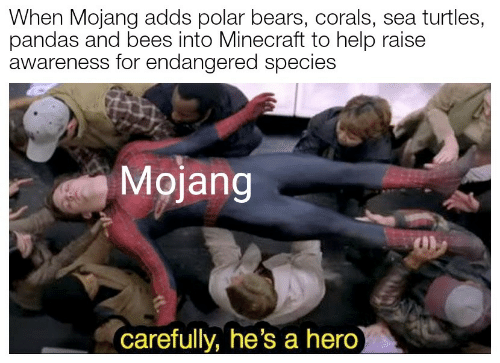 polar bears: When Mojang adds polar bears, corals, sea turtles,  pandas and bees into Minecraft to help raise  awareness for endangered species  Mojang  carefully, he's a hero)