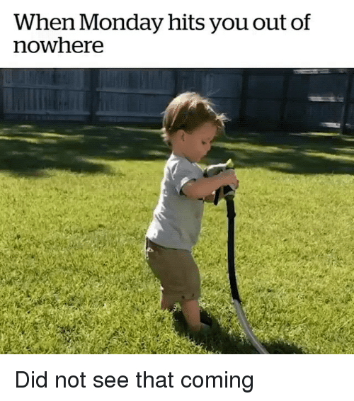 Monday, Girl Memes, and Did: When Monday hits you out of  nowhere Did not see that coming