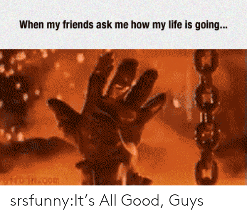 good guys: When my friends ask me how my life is going... srsfunny:It's All Good, Guys