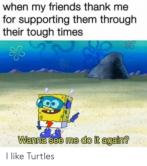 Do It Again, Friends, and Reddit: when my friends thank me  for supporting them through  their tough times  Wanna see me do it again? I like Turtles