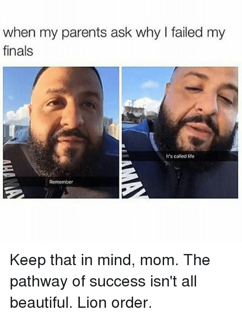 Lion Order: when my parents ask why failed my  finals  It's called life  Remember Keep that in mind, mom. The pathway of success isn't all beautiful. Lion order.