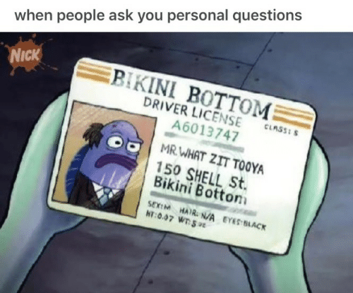 Bikini Bottom: when people ask you personal questions  Nick  BIKINI BOTTOM  DRIVER LICENSE-nsasm  A6013747  MR WHAT ZIT TOOYA  150 SHELL St.  Bikini Botton  SEXEM HAI N/A EYES BLACK  HT:0.07 WTSt