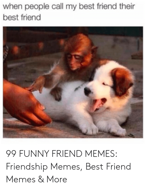Best Friend, Funny, and Memes: when people call my best friend their  best friend 99 FUNNY FRIEND MEMES: Friendship Memes, Best Friend Memes & More