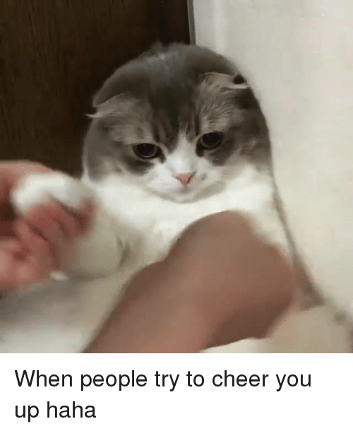 When People Try To Cheer You Up Haha Meme On Esmemescom