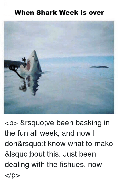 shark week: When Shark Week is over <p>I&rsquo;ve been basking in the fun all week, and now I don&rsquo;t know what to mako &lsquo;bout this. Just been dealing with the fishues, now.</p>