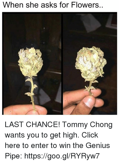 Tommy Chong: When she asks for Flowers. LAST CHANCE! Tommy Chong wants you to get high. Click here to enter to win the Genius Pipe: https://goo.gl/RYRyw7